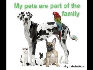 Our pets are part of the family.