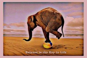 BIP ELEPHANT BALANCE